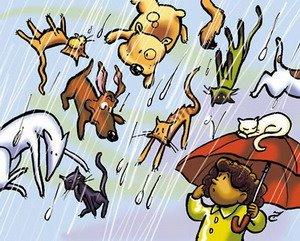 idioms relacionados a animais em ingles