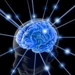 O cérebro e o aprendizado de idiomas